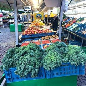 Stichting Markten Alkmaar image 1