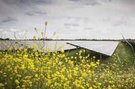 Voordelige zonnepanelen-actie
