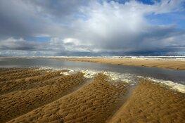 Strandhuisjes schuiven op om duinen te versterken