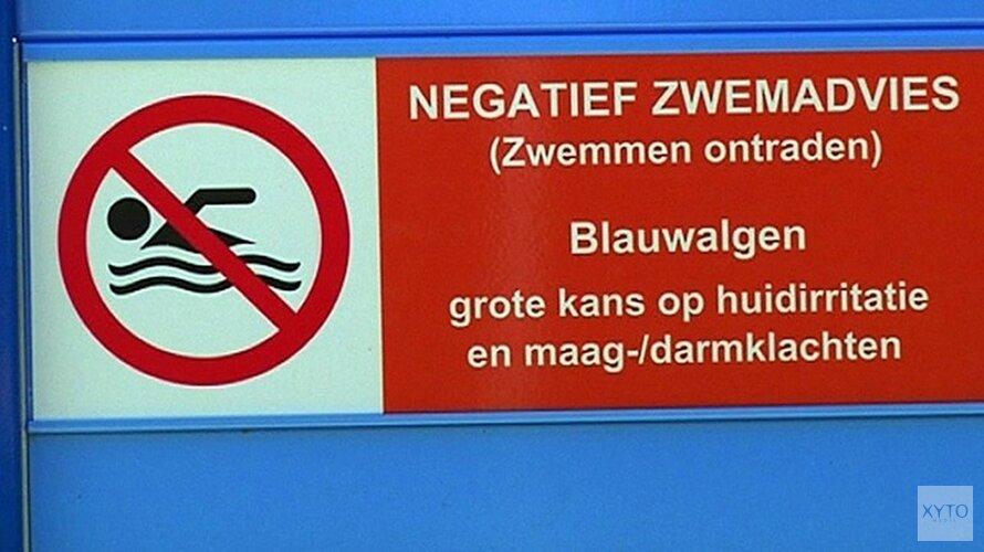 Hier kan je (beter) niet gaan zwemmen in Noord-Holland