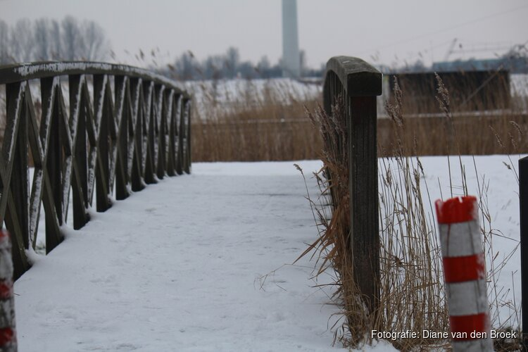 Dinsdag grote kans op flinke sneeuwval: mogelijk 5 centimeter